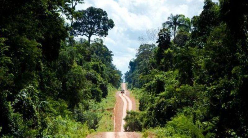 amazonia 2 marcelo camargo abr 25 7