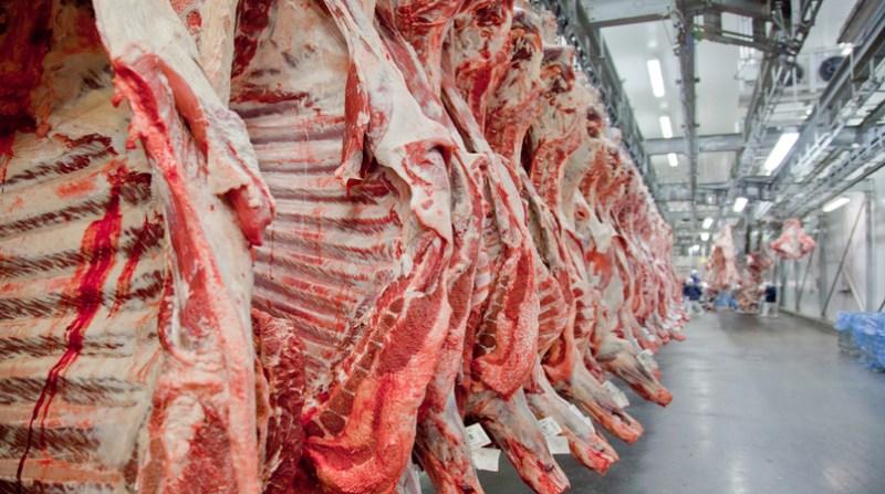carne 5 7 18