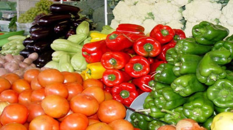 tomate pimentao beringela chuchu