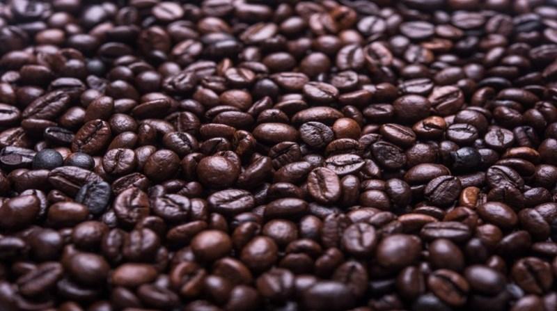 cafe 20 8
