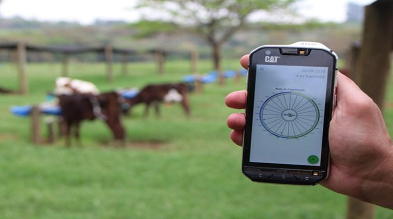 aplicativo gado leiteiro embrapa