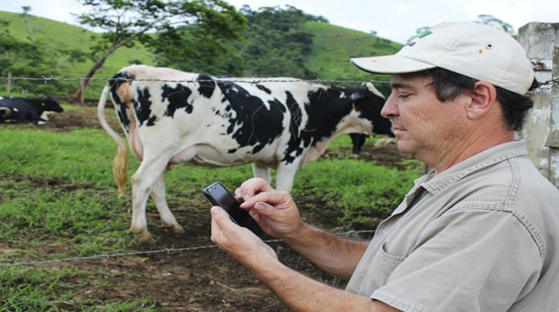 aplicativo leite embrapa