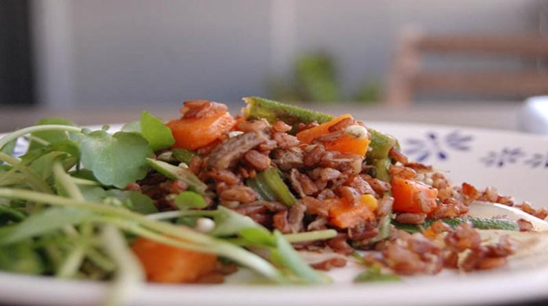 arroz vermelho prato eugenia ribeiro embrapa