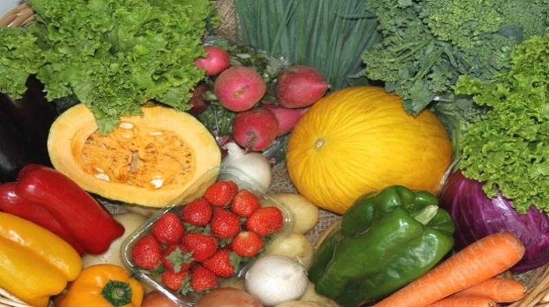 frutas legumes hortalicas 9 1 19