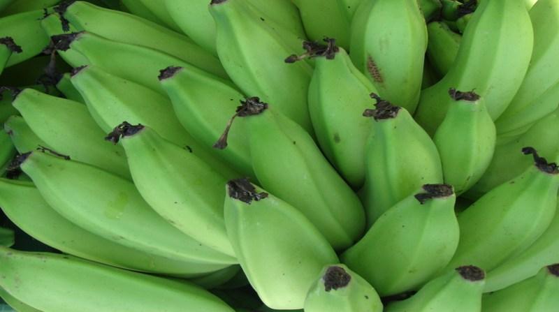 banana_23 2 19
