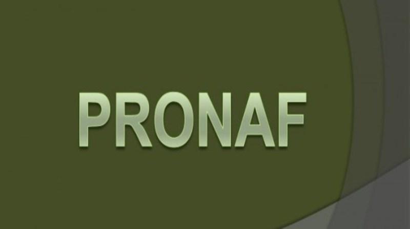 pronaf 9 2 19