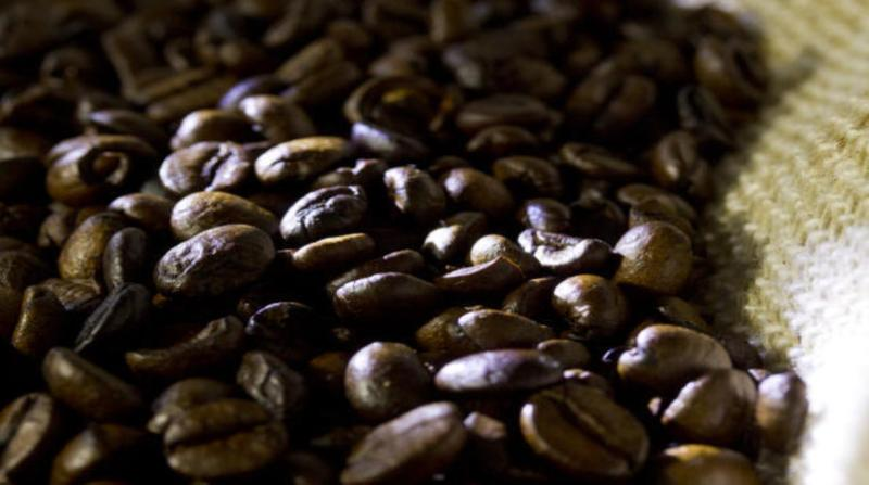 cafe 11 3 19