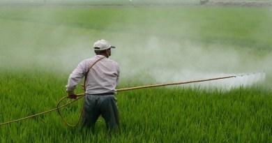 Em consulta pública da Anvisa, SRB defende uso do glifosato