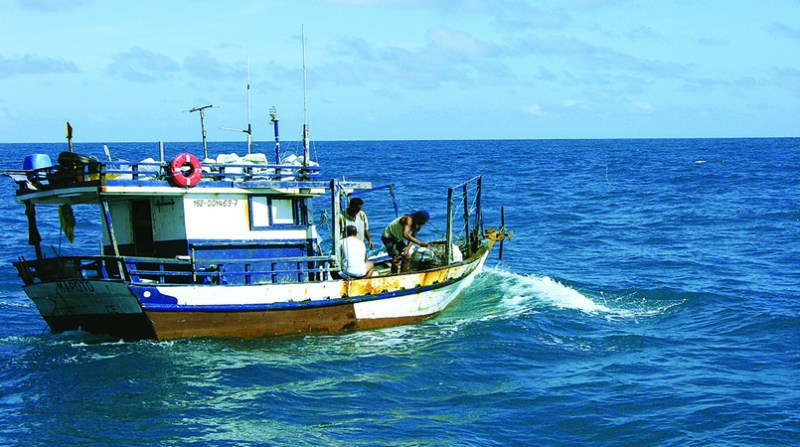 pesca tainha cidasc gov br sc 10 5 19