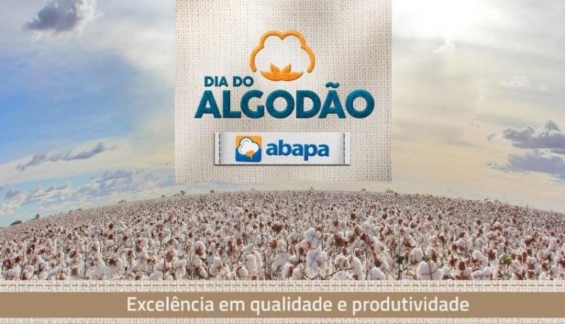 Dia do Algodão Bahia