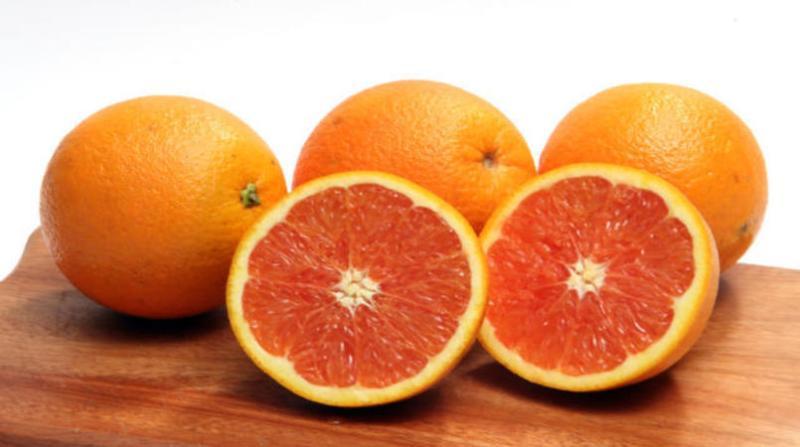 laranja 8 2 19 paulo lanzetta embrapa.jpg