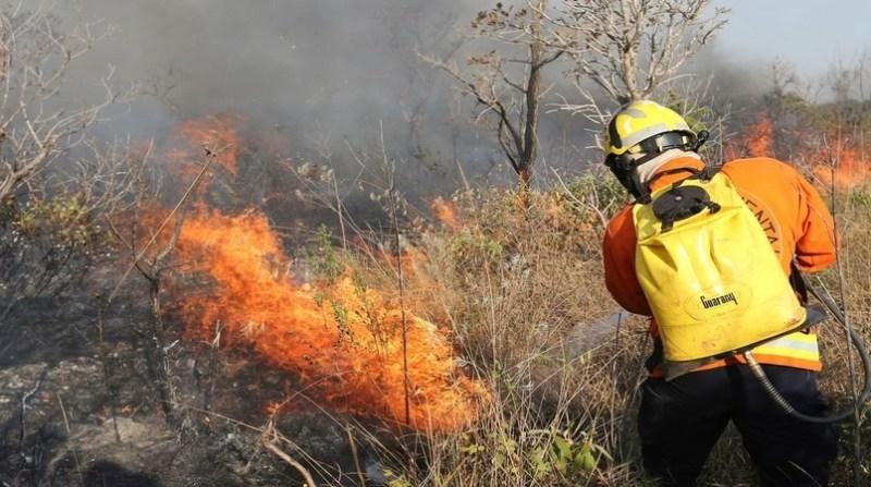 queimadas 29 agencia brasil