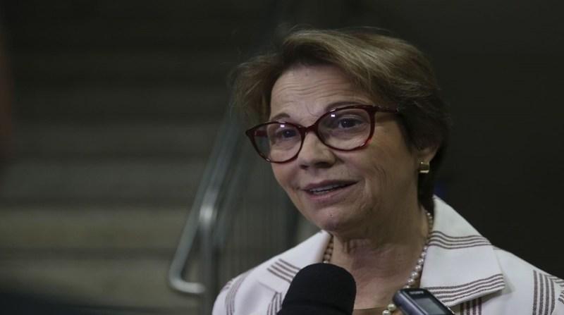 tereza cristina jose cruz agencia brasil 23 8 19