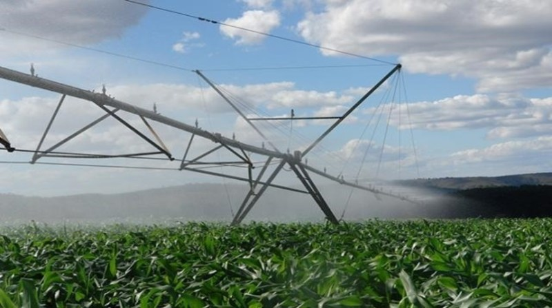 agricultura irrigada censo ibge embrapa