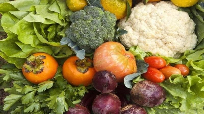 agricultura organica produtos foto mda