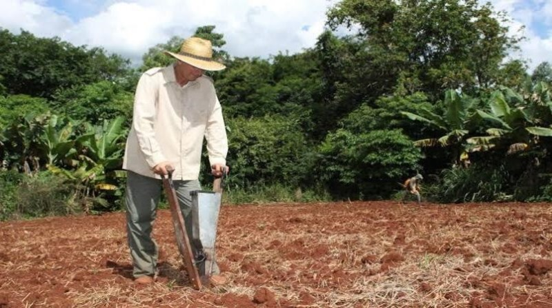 produtor rural lavoura aen gov pr