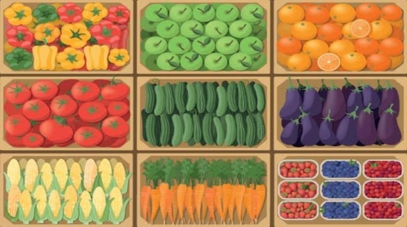 produtos de origem vegetal arte mapa