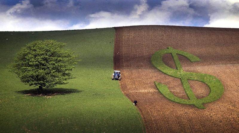 seguro rural 7 1 19