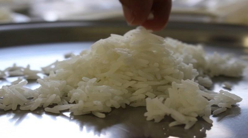 arroz aromatizado sebastiao araujo embrapa