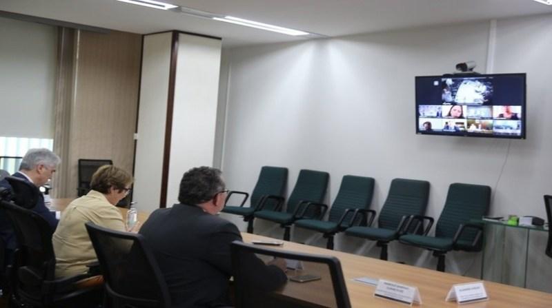 tereza cristina teleconferencia ministros america do sul div