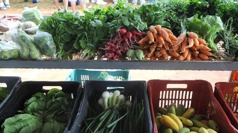 legumes rabanete cenoura feira agencia brasil ebc