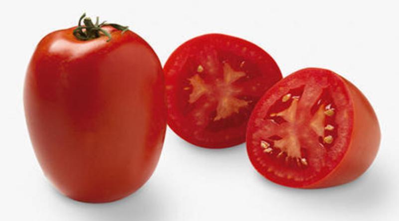 Oferta elevada e menores qualidade e demanda pressionam preços do tomate