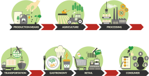 agro-food-system-value-chain