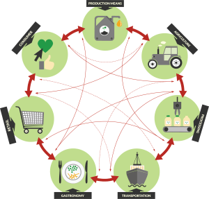 agro-food-system-value-network
