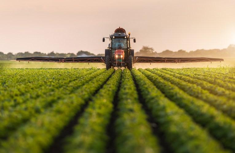 Associadas do Sindiveg investiram R$ 700 milhões na cadeia de produção de alimentos em 2020, aponta Sindiveg