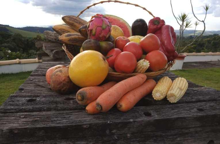 """""""Análise de resíduos é um processo rigoroso e complexo, mas indispensável para ter alimentos saudáveis e seguros para os consumidores"""", explica especialista do AgroSafety"""