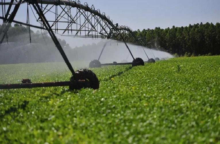 Agricultura irrigada de alta eficiência