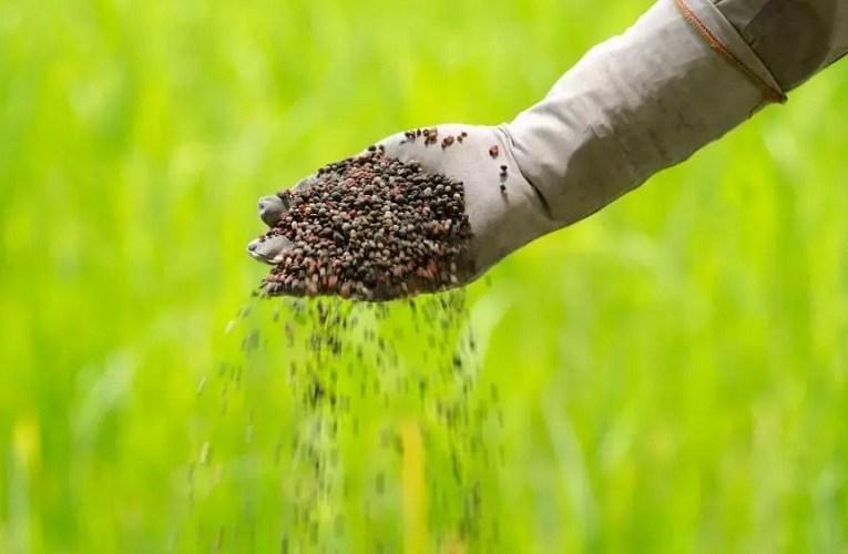Volumes recordes na descarga de fertilizantes