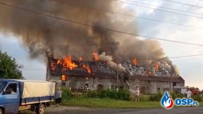 Strażacy uratowali zwierzęta z płonącego budynku