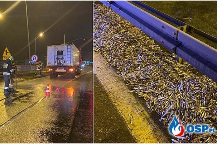 2 tony ryby wysypały się z ciężarówki na drogę