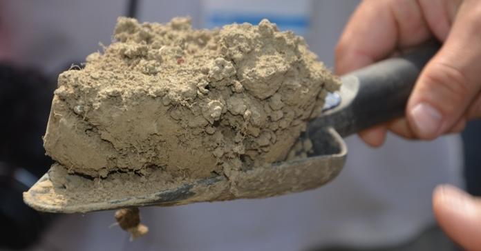 jakość gleb, gleby, gleba, próchnica