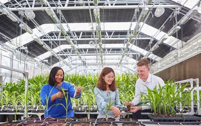 Bayer dynamizuje możliwości rozwoju rolnictwa zrównoważonego poprzez model innowacyjnej współpracy