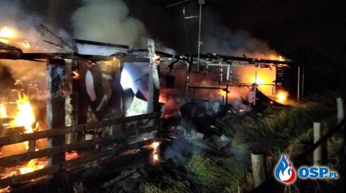 Groźny pożar na terenie stadniny koni i mini zoo. Poparzony właściciel trafił do szpitala