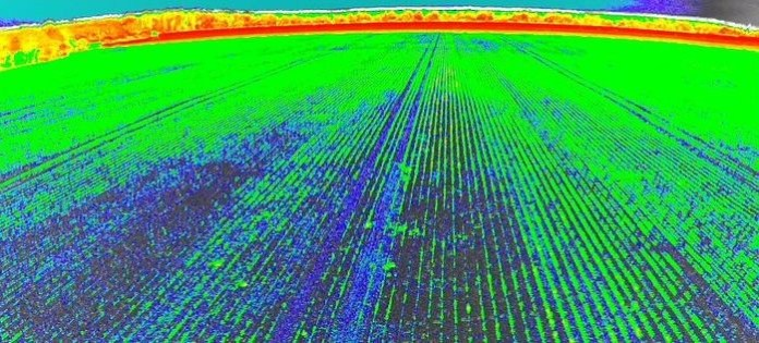 Fotografia jednego z pól wykonana z drona w podczerwieni