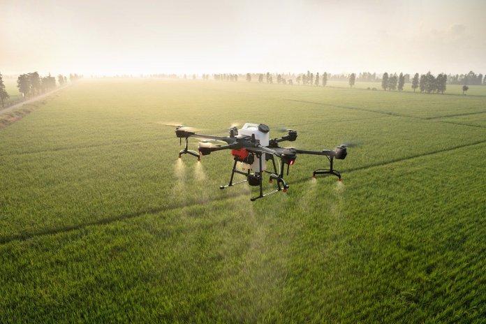 Drony ocenią plony