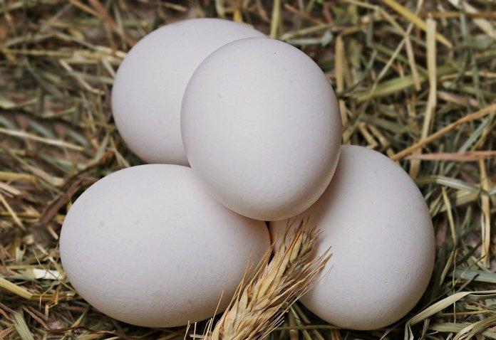 Produkujemy ponad 10 mld jaj rocznie!