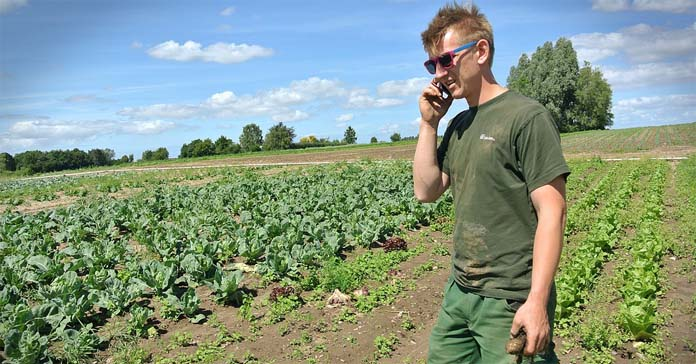 rolnictwo, gospodarstwa rolne, przemysł spożywczy, dopłaty dla rolników, Wspólna Polityka Rolna
