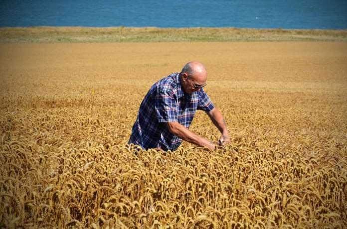 kontrola na miejscu, ARiMR, KRIR, samorząd rolniczy