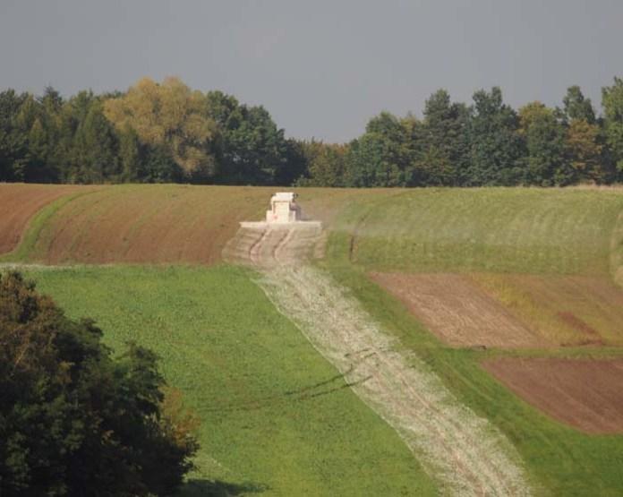 Wapnowanie gleby ważnym elementem agrotechniki