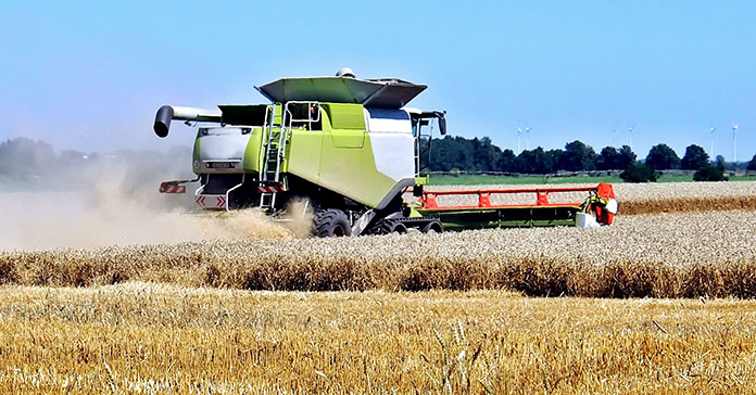 zbiory zbóż, zbiory rzepaku, zbiory warzyw, zbiory owoców, GUS, szacunek głównych ziemiopłodów rolnych i ogrodniczych