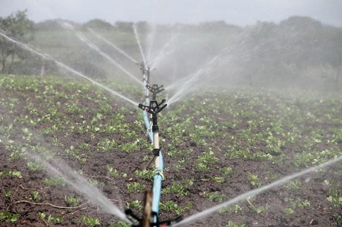 Nawadnianie gospodarstw: koniec naboru, wstępne podsumowanie