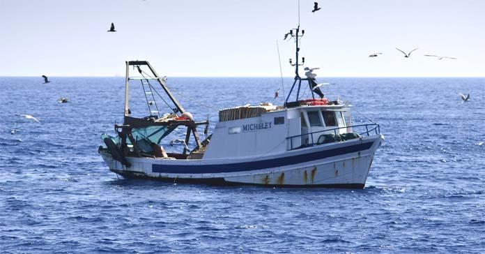 Limity połowowe, ministerstwo rolnictwa, AGRIFISH, Rybołóstwo