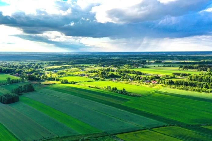 Natura 2000 - ARiMR opublikowała listy kolejności przysługiwania pomocy