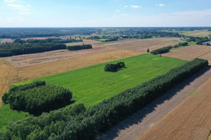 Zmiana miejscowego planu zagospodarowania przestrzennego a odszkodowanie