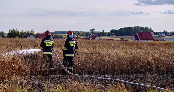 Wypalanie traw - niechlubna tradycja