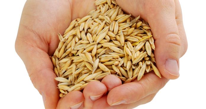 Polska awansowała na 4 miejsce w rankingu eksporterów unijnych zbóż